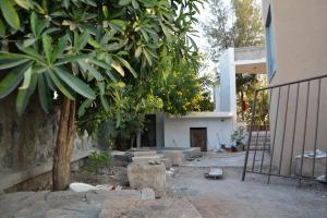 6.-Lanscaping-villa-aaranyak-making-7